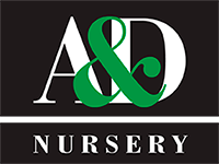 A and D Peonies Logo